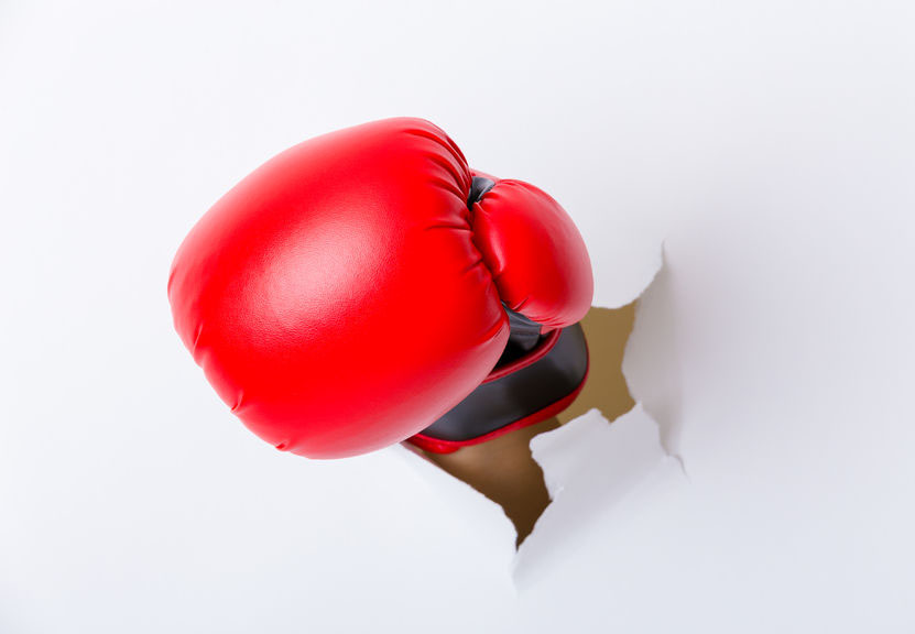 Boxing Club Is Back!