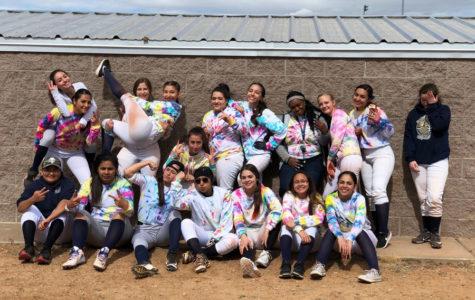 Mixed Start to Demonette Softball Season