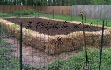 The Pitchfork